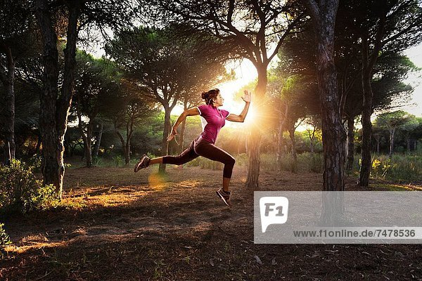 Europa  Frau  rennen  Wald  Kiefer  Pinus sylvestris  Kiefern  Föhren  Pinie  Andalusien  Cadiz  Costa de la Luz  Spanien  Tarifa