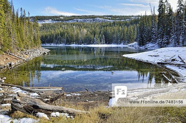 Neuschnee am Mesa Lake  Grand Mesa National Forest  Colorado  USA