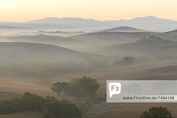 Morgenstimmung  Val dÆOrcia  Orcia-Tal  UNESCO-Weltkulturerbe  Region Toskana  Provinz Siena  Italien  Europa