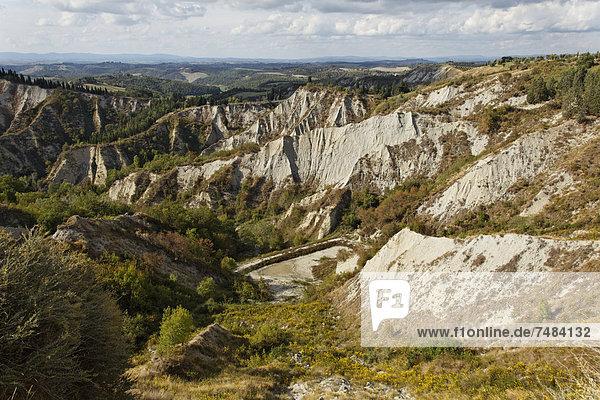 Crete von Siena  Crete Senesi  w÷rtlich: die Tonminerale von Siena  Erosionsformen Calanchi bei Chiusure  Buonconvento  Region Toskana  Provinz Siena  Italien  Europa
