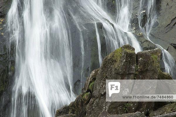 Powerscourt Wasserfall  County Wicklow  Irland  Europa