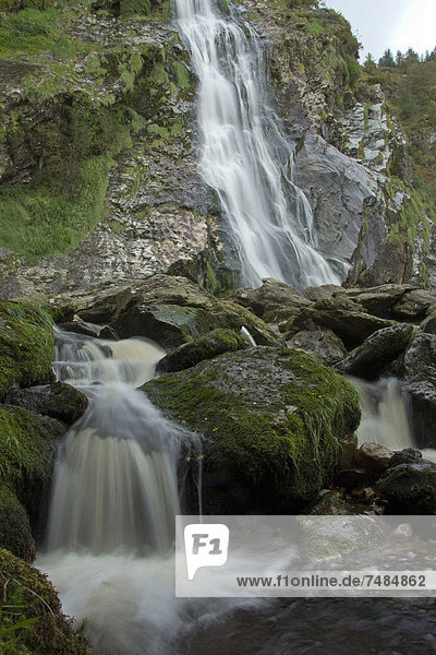 Powerscourt Wasserfall,  County Wicklow,  Irland,  Europa