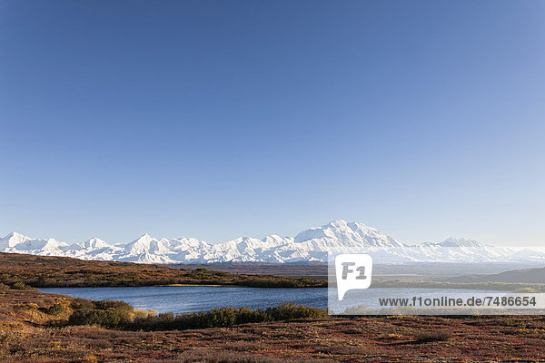 USA  Alaska  View of Mount Mckinley and reflection of pond at Denali National Park