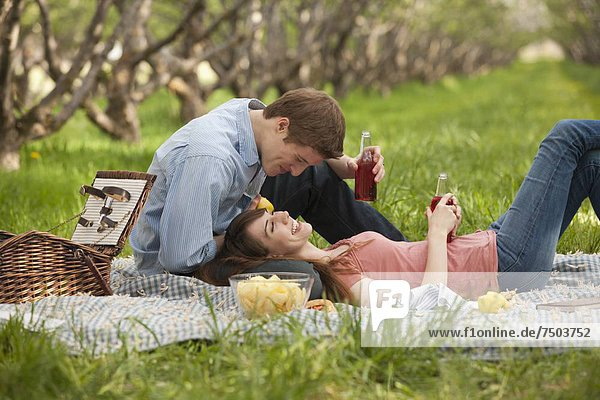 USA  Utah  Provo  Young couple having picnic in orchard