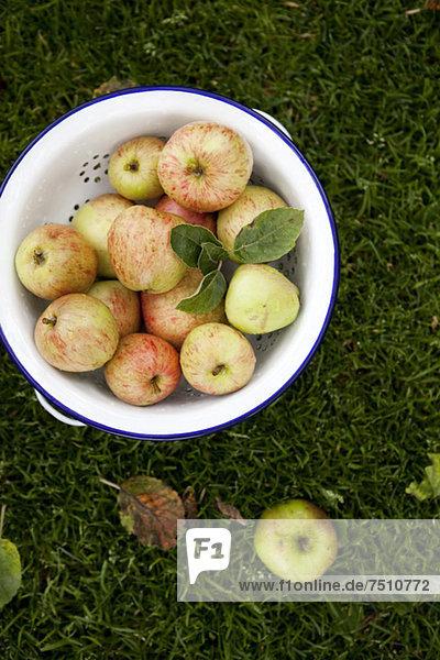 Direkt über dem Apfelschrot im Sieb auf Gras
