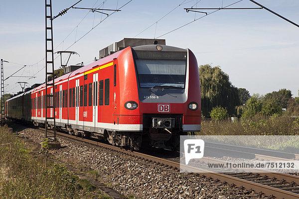 Regionalzug der Deutschen Bahn,  Kamen,  Ruhrgebiet,  Nordrhein-Westfalen,  Deutschland,  Europa,  ÖffentlicherGrund