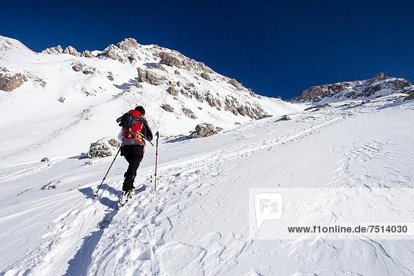 Skitourengeher beim Aufstieg zum Zendleser Kofel im Villnösstal oberhalb der Zanser Alm  hinten die Aferer Geisler  Südtirol  Italien  Europa