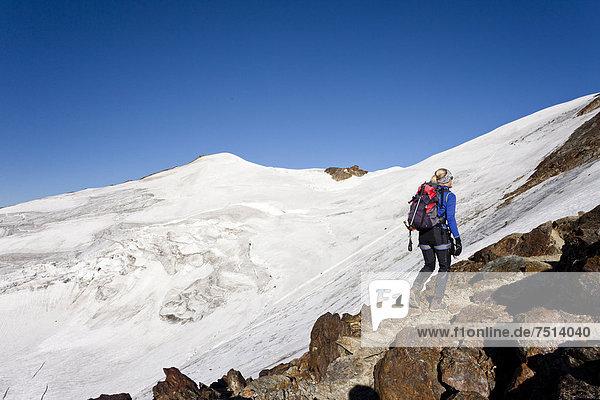 Bergsteiger auf dem Gipfelgrat  beim Aufstieg zur Zufallspitze  hinten der Cevedale  Südtirol  Italien  Europa