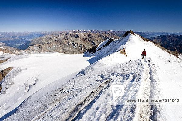 Bergsteiger beim Aufstieg zum Monte Cevedale  hinten die Zufallspitze  Südtirol  Italien  Europa