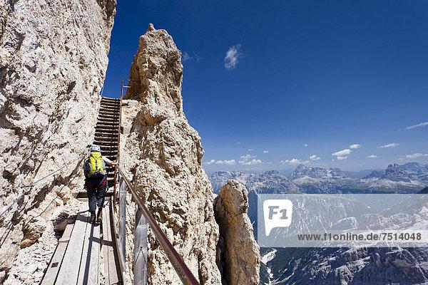 Bergsteiger beim Aufstieg über den Klettersteig  Via ferrata Ivano Dibona am Monte Cristallo zum Gipfel des Cristallino oberhalb von Cortina  Belluno  Dolomiten  Italien  Europa