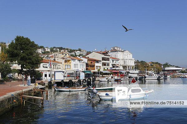 Hafen Insel angeln Asien Istanbul Türkei