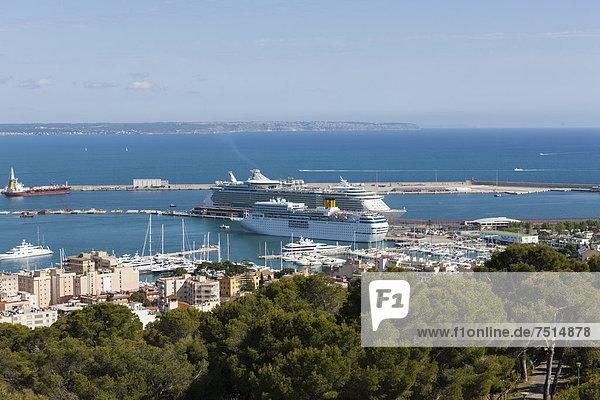 Hafen Europa Palast Schloß Schlösser Ansicht Palma de Mallorca Balearen Balearische Inseln Mallorca Spanien
