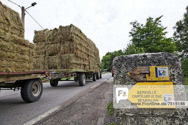 Wanderzeichen Via Francigena  Frankenstraße  Cussey-sur-l'Ognon  Brücke über Fluss l'Ognon  Besancon  Departement Doubs  Region Franche-ComtÈ  Frankreich  Europa