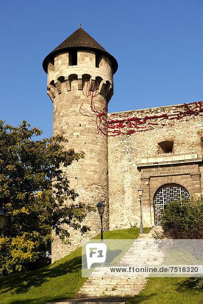Burgpalast  Burgmauern und Befestigungsanlagen  Budapest  Ungarn  Europa
