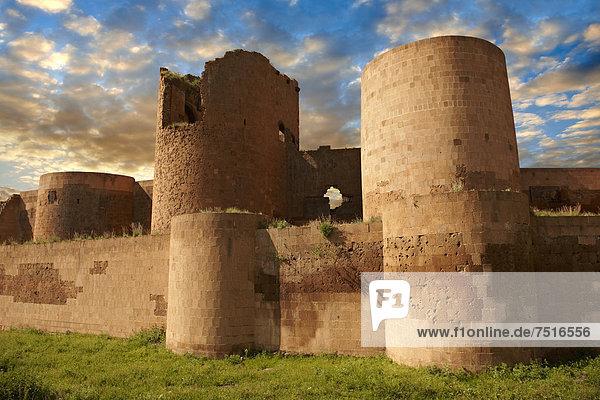 Truthuhn  Wand  Großstadt  Fernverkehrsstraße  Ruine  armenisch  Anatolien  antik  Seide  Türkei
