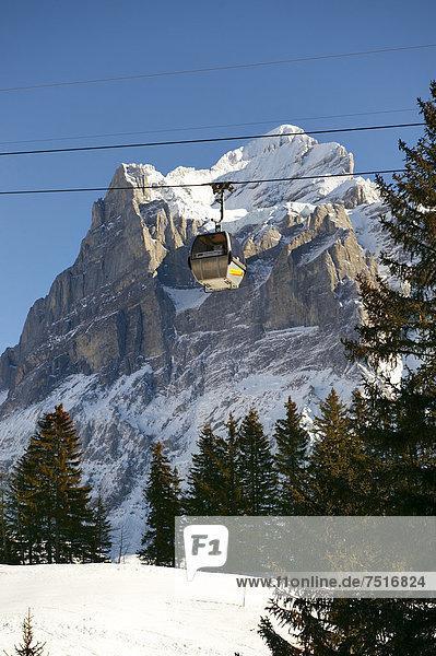 Alpine slopes with snow looking towards the Wetterhorn Mountain  Switzerland  Europe