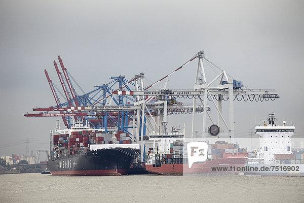 Schiffe am Containerterminal Tollerort  Hamburg  Deutschland  Europa