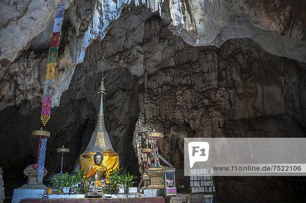 Wat Tham Pla temple or Monkey Cave temple  Mae Sai region  Chiang Rai province  northern Thailand  Thailand  Asia
