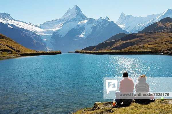 Alpen  Grindelwald  Schweiz