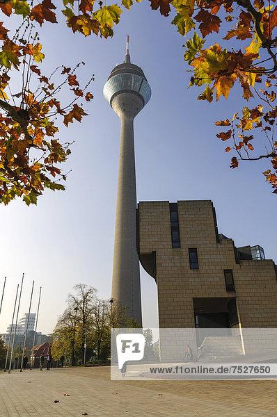 Rheinturm mit dem nordrhein-westfälischen Landtag  Düsseldorf  Nordrhein-Westfalen  Deutschland  Europa
