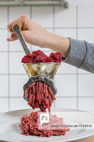 Fleischwolf  frisches Fleisch wird zu Hackfleisch verarbeitet