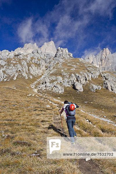 Bergsteiger beim Aufstieg zum Piz Boe  Klettersteig Piazzetta  Dolomiten  Südtirol  Italien  Europa