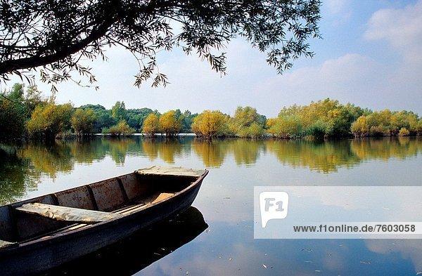 nahe  See  Boot  Fluss  angeln  Slowakei