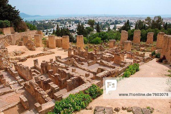 Afrika  Tunesien