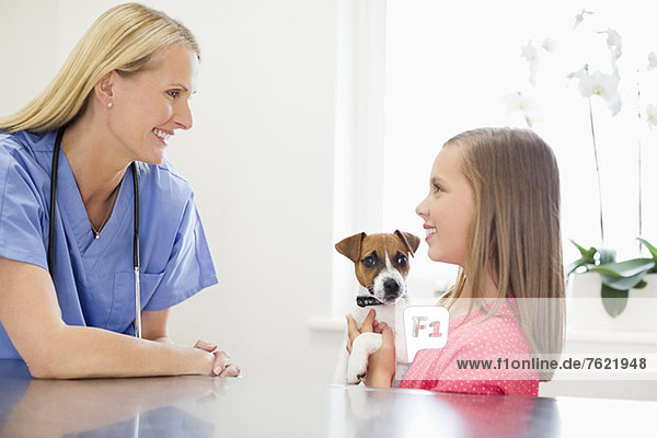 Veterinarian and owner examining dog in vet's surgery