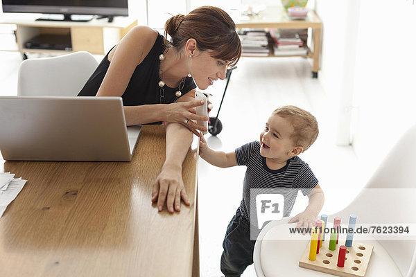Geschäftsfrau  die zu Hause arbeitet