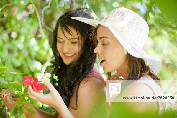 Women admiring flowers in park