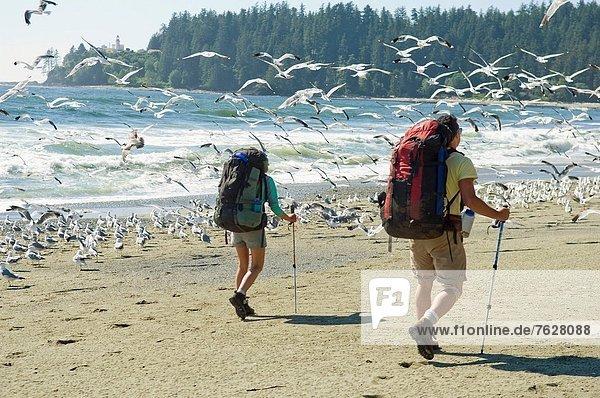 Rucksack  Frau  Mann  gehen  Strand  British Columbia  Kanada