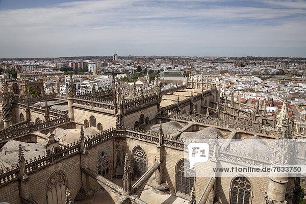 Ausblick vom Glockenturm auf die Kathedrale Santa Maria de la Sede und auf die Stadt  Sevilla  Andalusien  Spanien  Europa