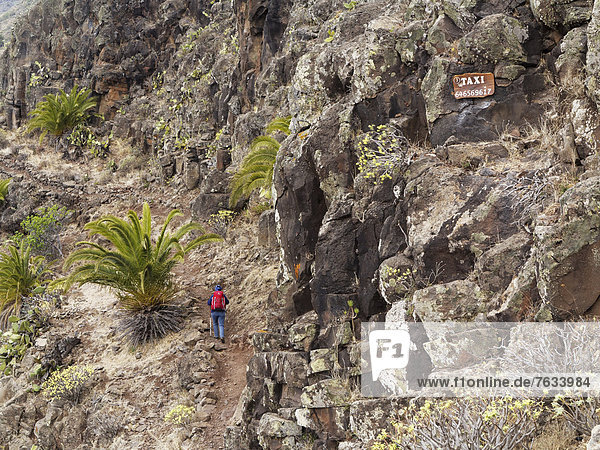 Woman wearing a backpack while hiking along a hiking trail  taxi sign with a telephone number on the rock wall  Barranco de Argaga  La Gomera  Canary Islands  Spain  Europe
