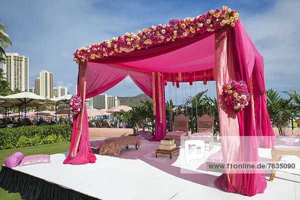 Hochzeit  Dekoration  pink