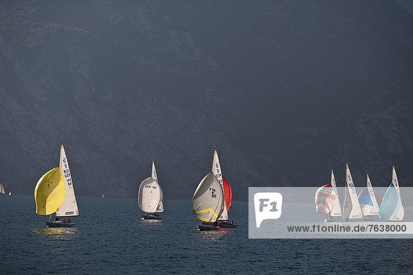 Segeln  Wasser  Europa  Sport  Yacht  Gardasee  Trentino Südtirol  Italien  Regatta  Torbole