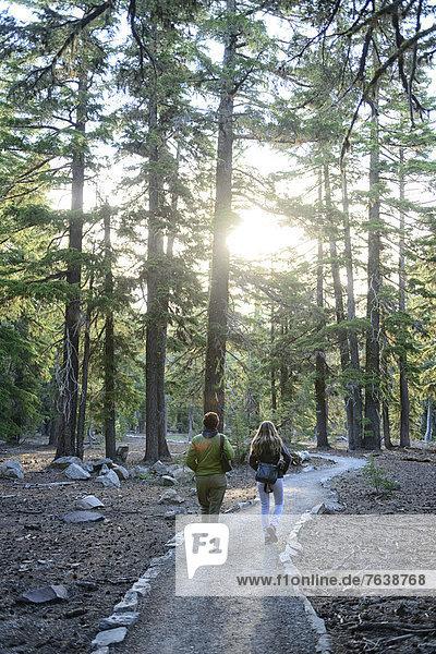 Vereinigte Staaten von Amerika  USA  Nationalpark  Frau  Amerika  gehen  folgen  Wald  Cascade Mountain  Kratersee  Oregon