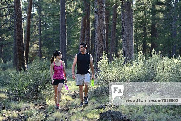 Vereinigte Staaten von Amerika  USA  Frau  Mann  Amerika  gehen  folgen  rennen  Wald  Nordamerika  Außenaufnahme  Oregon