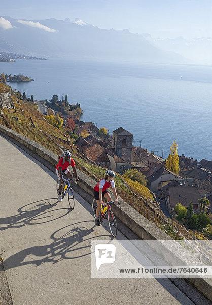Frau Mann Wein Fahrradfahrer Fahrrad Rad See schwarz Herbst Genfer See Genfersee Lac Leman multikulturell Rennrad Ethnisches Erscheinungsbild Fahrrad fahren