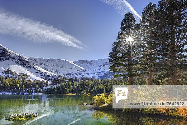 Vereinigte Staaten von Amerika  USA  Berg  Amerika  Berggipfel  Gipfel  Spitze  Spitzen  Sonnenstrahl  Kalifornien  Schnee