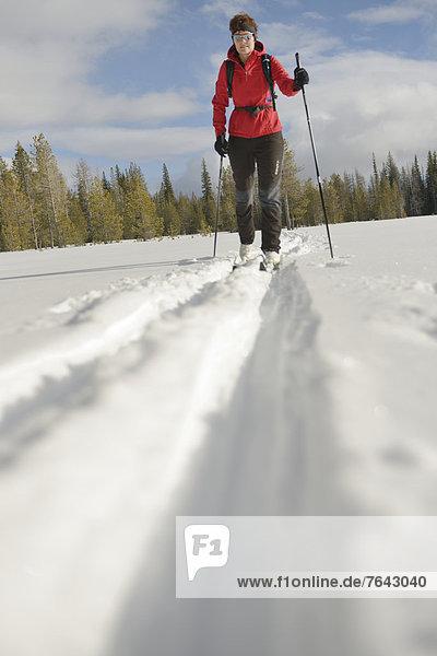 Vereinigte Staaten von Amerika  USA  Biegung  Biegungen  Kurve  Kurven  gewölbt  Bogen  gebogen  Wintersport  Frau  Winter  Sport  Amerika  Aktion  Wald  Landschaftlich schön  landschaftlich reizvoll  Natur  Skisport  Ski  Nordamerika  Außenaufnahme  Norden  querfeldein  Cross Country  Oregon  Schnee