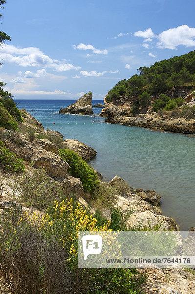 Außenaufnahme , Landschaftlich schön,  landschaftlich reizvoll , Europa , Tag , Landschaft , Küste , niemand , Meer , Natur , Mallorca , Balearen,  Balearische Inseln , Spanien