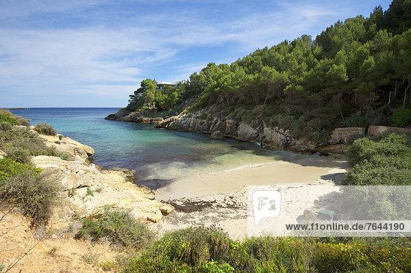 Außenaufnahme , Landschaftlich schön,  landschaftlich reizvoll , Europa , Tag , Strand , Landschaft , Küste , niemand , Meer , Natur , Mallorca , Sandstrand , Balearen,  Balearische Inseln , Spanien