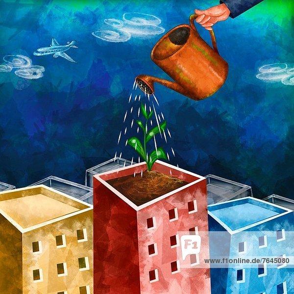 Wasser  Mensch  Gebäude  Wachstum  Pflanze  Investment  Zeichnung