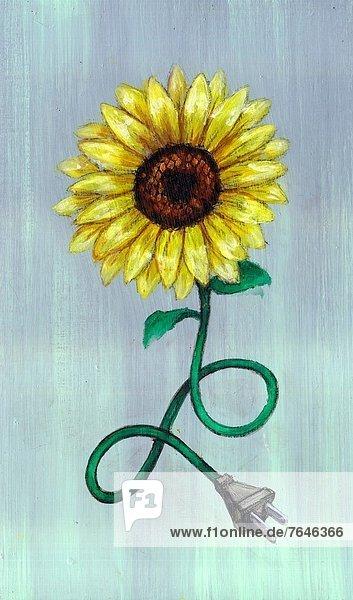 Energie  energiegeladen  Fotografie  Verbindung  Blume  grün  Symbol Energie, energiegeladen ,Fotografie ,Verbindung ,Blume ,grün ,Symbol