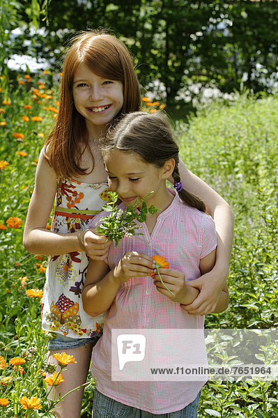 Girls in a meadow of marigolds  Kräuter-Erlebnis-Park herb theme park  Bad Heilbrunn  Loisachtal  Tölzer Land  Upper Bavaria  Germany  Europe
