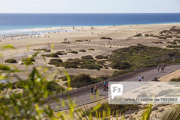 Europa  Strand  Kanaren  Kanarische Inseln  Fuerteventura  Spanien Europa ,Strand ,Kanaren, Kanarische Inseln ,Fuerteventura ,Spanien