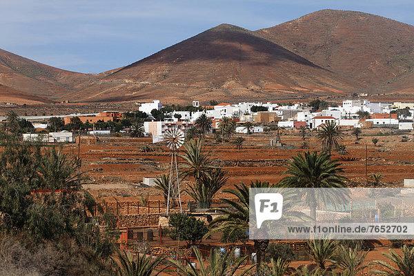 Europa Kanaren Kanarische Inseln Fuerteventura Spanien Europa,Kanaren,Kanarische Inseln,Fuerteventura,Spanien