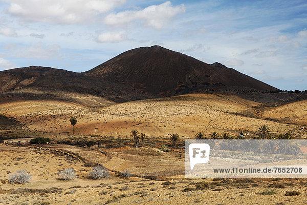 Europa  Landschaft  Wüste  Kanaren  Kanarische Inseln  Fuerteventura  Spanien Europa ,Landschaft ,Wüste ,Kanaren, Kanarische Inseln ,Fuerteventura ,Spanien