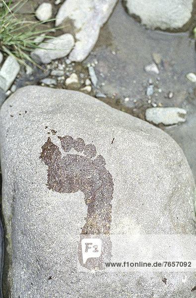 Nasser Fußabdruck auf Stein - Natur
